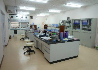 DWM Project and Laboratory 02